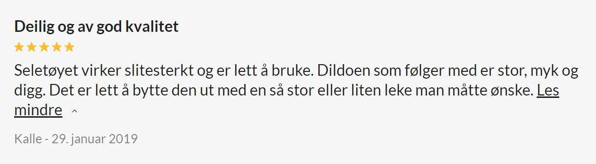 Skjermbilde 2021 03 12 094027